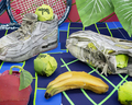 Still life with tennis balls and racket